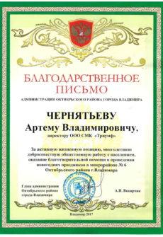 смк триумф владимир (2)